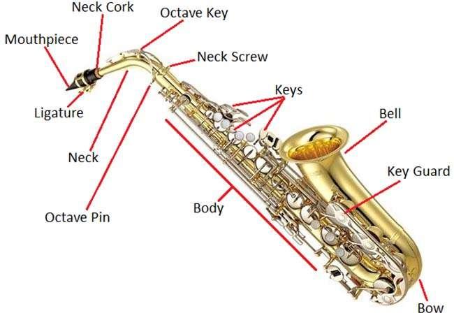 Chi tiết kèn Saxophone