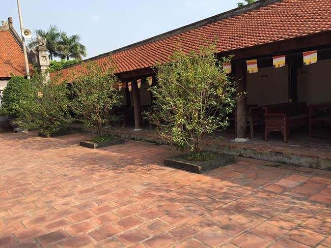 Một góc an bình và thanh tịnh bên trong chùa Dâu