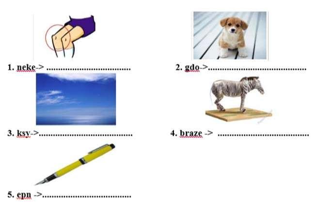Sắp xếp lại các chữ cái để tạo được từ phù hợp với mỗi tranh sau