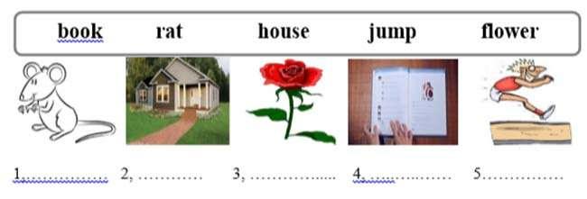 Viết các từ phù hợp với mỗi bức tranh