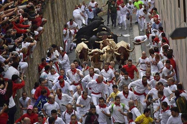 lễ hội bò đuổi