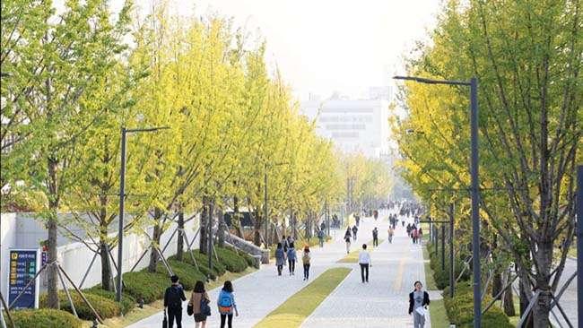 Đại học đẹp nhất Hàn Quốc