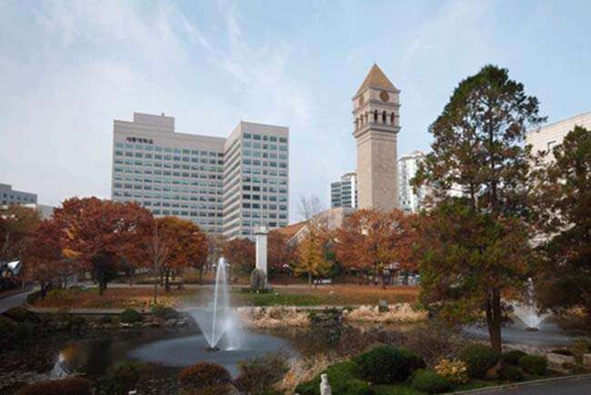 Đại học Sejong