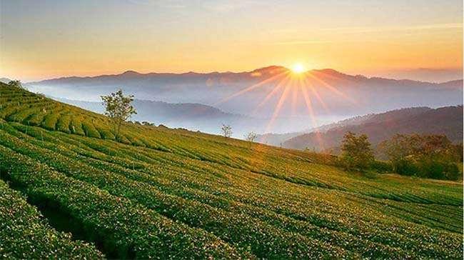 Địa điểm du lịch, sống ảo lý tưởng tại Hòa Bình