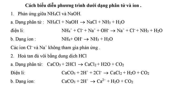 Cách biểu diễn phương trình dưới dạng phân tử và ion
