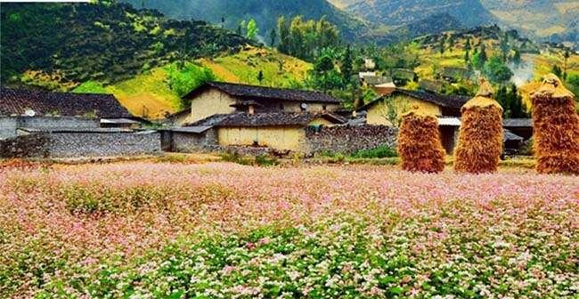 Cảnh đẹp tại Hà Giang