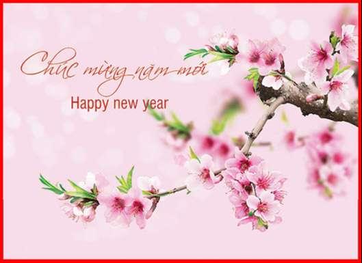 Chúc mừng năm mới Happy new year