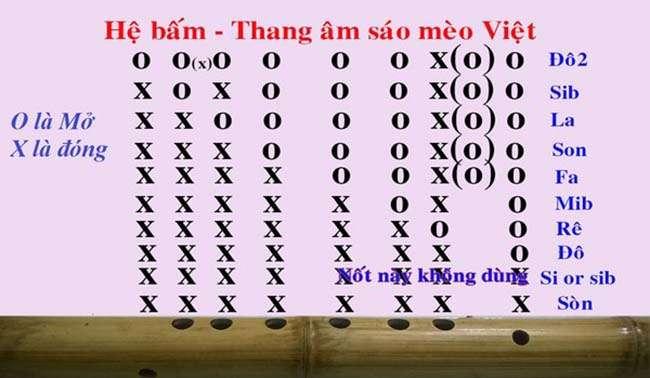 Hệ bấm Thang âm ( các nốt ) trên sáo Mèo Việt