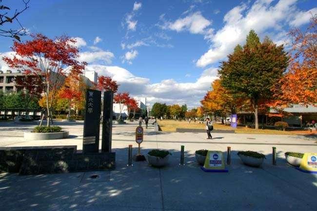Khuôn viên nên thơ của Đại Học Tohoku