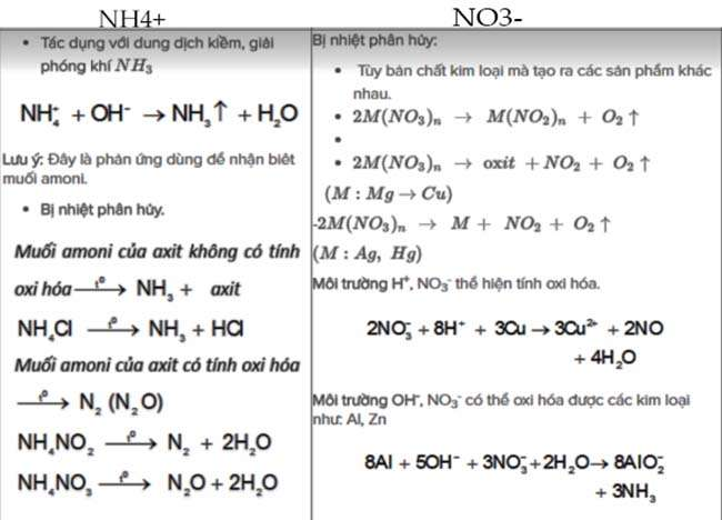 Muối amoni NH4+   và NO3–