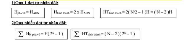 Tính số liên kết hiđro được tạo thành và phá vỡ