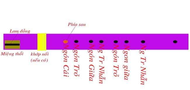 hình ảnh cho các nốt trên sáo mèo tầu