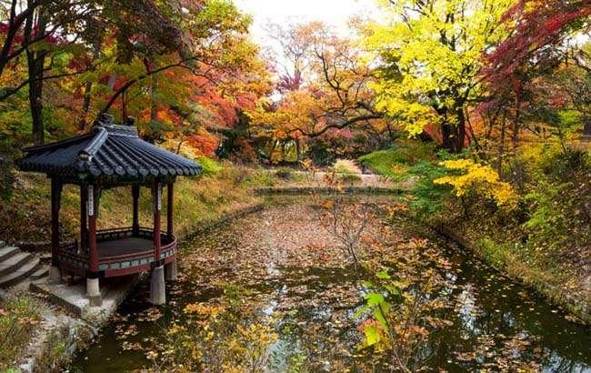 Đằng sau Changdeok có một khu vườn Biwon rộng lớn được gọi là Secret Garden (khu vườn bí mật)