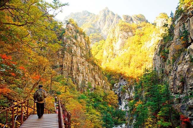 Núi Seoraksan trở nên lộng lẫy vào mùa thu