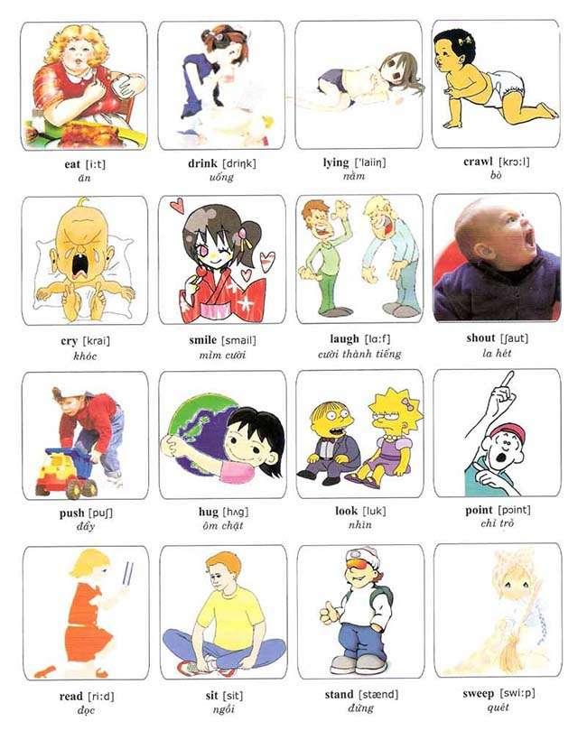 Các từ vựng hình ảnh về một số động từ thông dụng