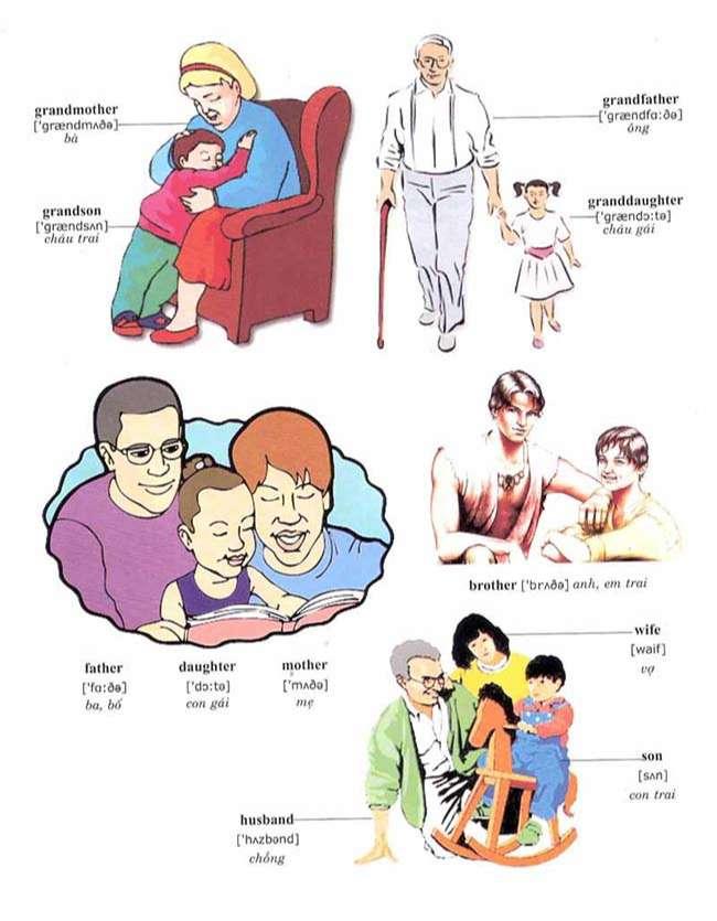 Các từ vựng về gia đình- Family