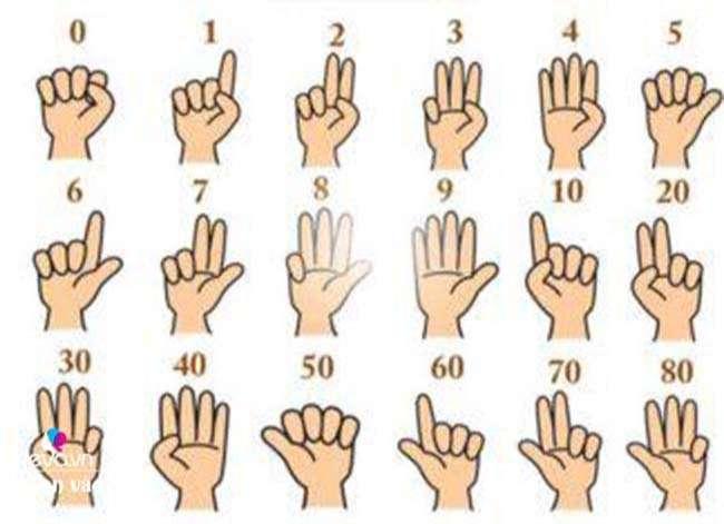 Quy ước các số trong Finger Math