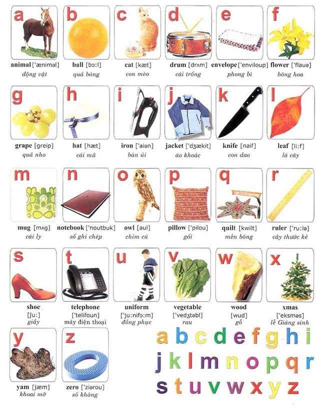 Từ vựng kết hợp bảng chữ cái