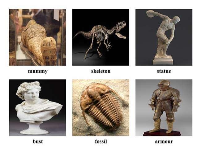Từ vựng tiếng Anh về viện bảo tàng
