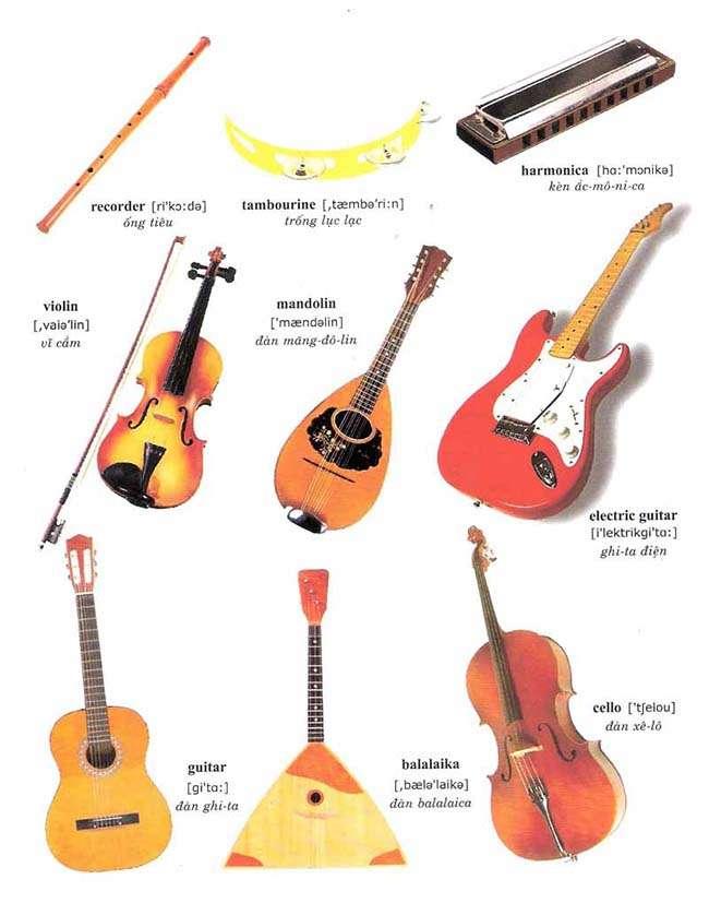 Từ vựng về các loại nhạc cụ