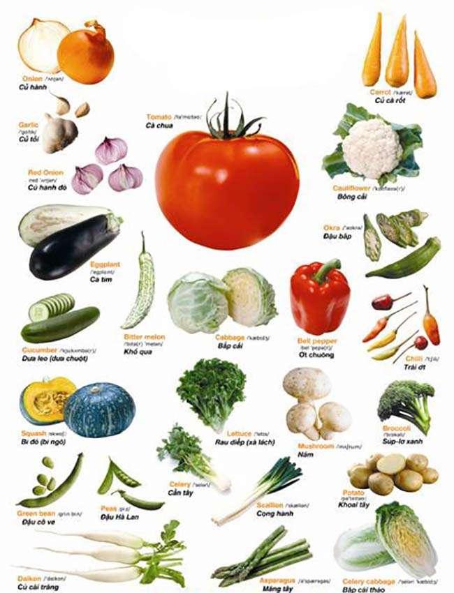 Từ vựng về các loại rau củ quả- Vegetable