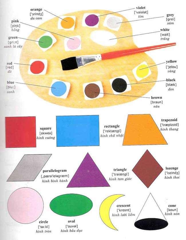 Từ vựng về màu săc và hình khối – Colors and Shapes