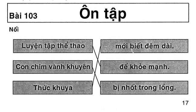 Bài 103 Ôn tập