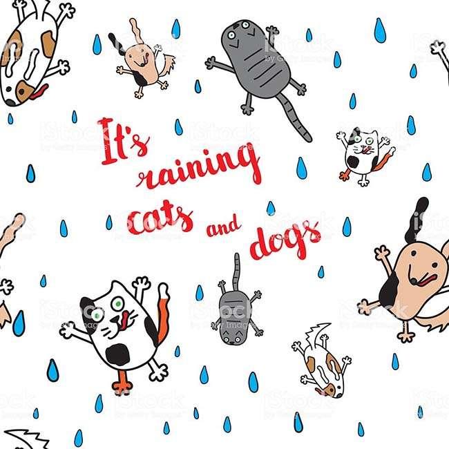 Trời đang mưa như trút nước