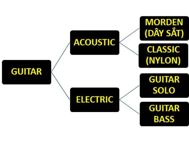 Phân Loại Guitar